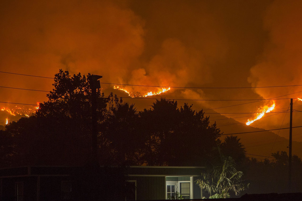 wildfire-blog.jpg